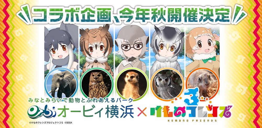 オービィ横浜で「けものフレンズ3」とのコラボ企画を実施
