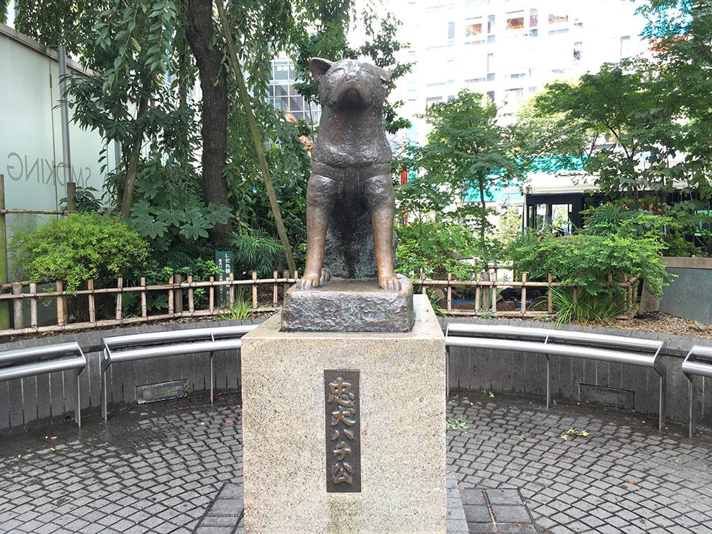 Hachiko.jpg