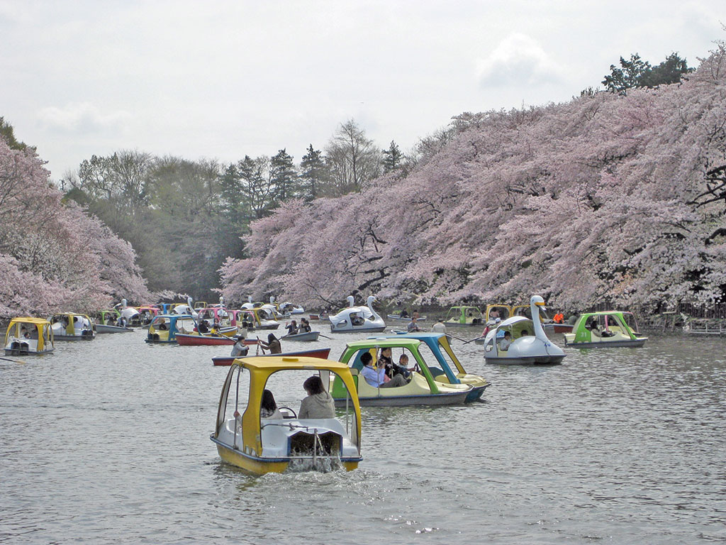 Inokashira.jpg